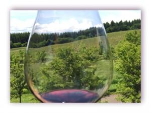 Wine Tours Northwest Wine