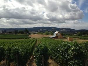Vineyard View at Bergstrom