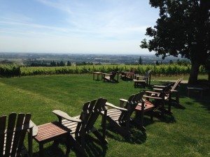 Chairs and vineyard view